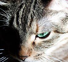 Green Eyed Beauty by Melapaloosa
