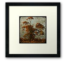estampe tree Framed Print