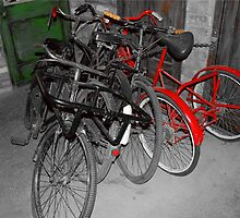 A Collection of Old Bikes by DecipleofGeshla