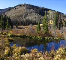 Wetland, Crooked Creek Ranch, Winter Park, CO 2009 by J.D. Grubb