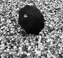 Fallen Autumn Umbrella  by David Piszczek