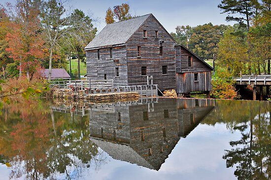 Reflections on a Pond - Yates Millpond, NC by mrthink