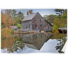 Reflections on a Pond - Yates Millpond, NC Poster
