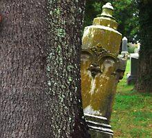 Peekaboo Grave by beresfordphotos