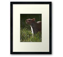 Cut the grass! Framed Print