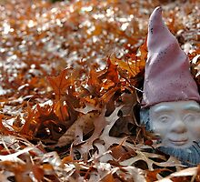 Elusive Yard Gnome Enjoys Fall Cover by Ainsley Kellar Creations