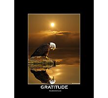 """Gratitude"" Bald Eagle Photographic Print"