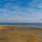 Bongaree Beach, Bribie Island by SusanSalutation