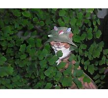 funny cat maybe hunting Photographic Print