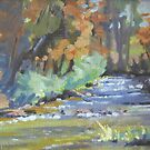 Beetlekill at Fall Creek by Cristy Anspach