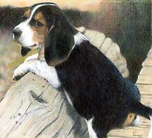 Beagle Puppy Dog Portrait by Oldetimemercan