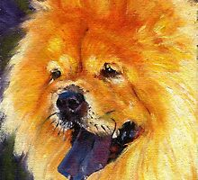 Chow Chow Dog Portrait by Oldetimemercan