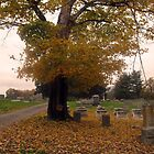 October Graveyard by Virginia Shutters