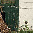 the green door by Lynne Prestebak