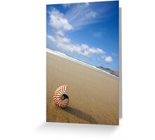 Beached Nautilus Greeting Card