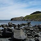 Tors Cove Panorama by Amanda  Brushett