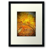 The Autumn Curve Framed Print