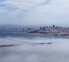 A San Francisco view by Ted Petrovits
