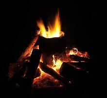 Bonfire by David Lee Thompson