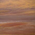 Desert landscape by DianaC
