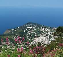 Over Looking The Tyrrhenian Sea by jules572