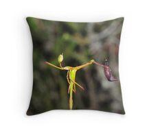 Drakaea gracilis Throw Pillow