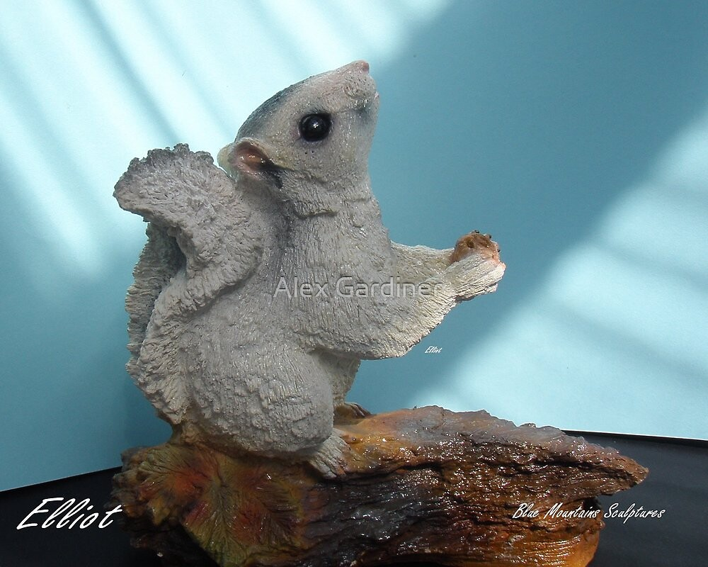 Making a sculpture stage 9 Elliot A beautiful white Squirrel much loved. by Alex Gardiner