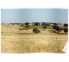 Australian rural scene Poster