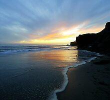 """Lighthouse State Beach"" Santa Cruz by DanielPhoto"