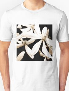 Cyclamena Ballerina T-Shirt
