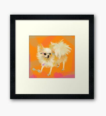 Dog Chihuahua Orange Framed Print