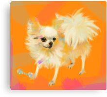 Dog Chihuahua Orange Canvas Print