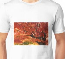 Autumnal Colour Unisex T-Shirt