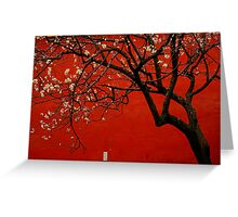 China Red  Greeting Card