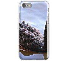 The lake walker iPhone Case/Skin