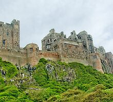 Wandering up to Bamburgh Castle by robdavies