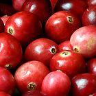 Cranberries by SmoothBreeze7