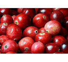 Cranberries Photographic Print