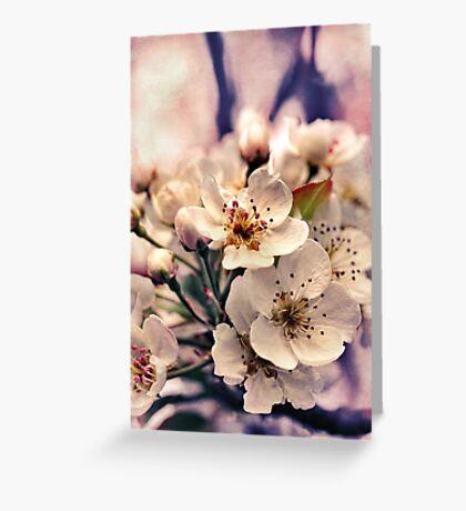 Blossoms at Dusk  Greeting Card