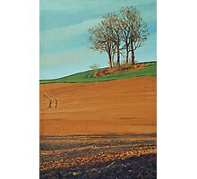 Sunset on the fields in early spring Photographic Print