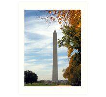Washington Beauties  Art Print