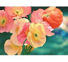 All the Colors of Sunshine Photographic Print