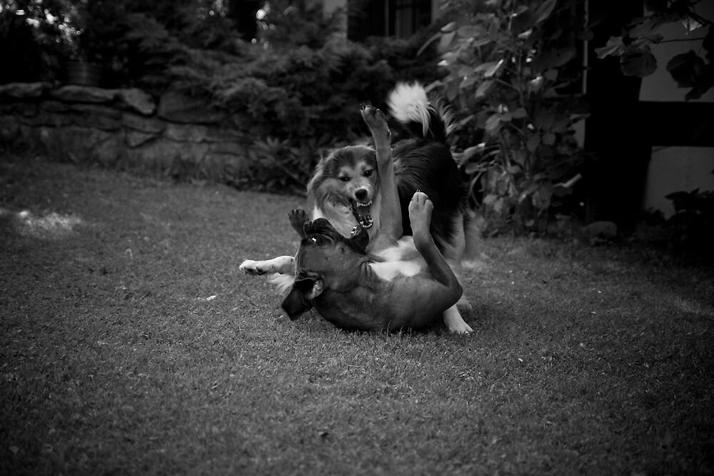Play time ;) by Kasia Fiszer