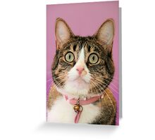 Hurrayyyy....I found a home Greeting Card