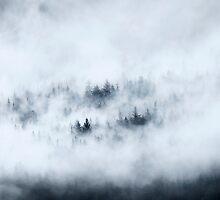 Winter's Blanket by DawsonImages