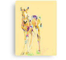 Foal Jip Canvas Print