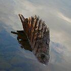 Clunie Lake by HillbillyDlux