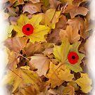 Remembering The Fallen by Jeff Ashworth & Pat DeLeenheer