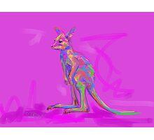 Baby Kangaroo Photographic Print