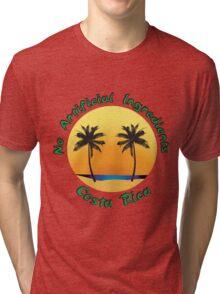 No artificial Ingredients Tri-blend T-Shirt